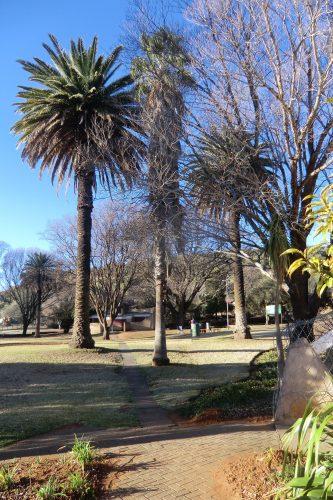 Ein Stadtpark, in dem es auch ein öffentlich zugängliches Orchideen-Gewächshaus gibt.