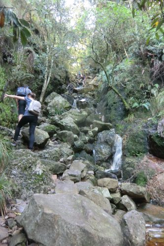 Der Aufstieg auf den Tafelberg führte zum Teil durch ein Flussbett.