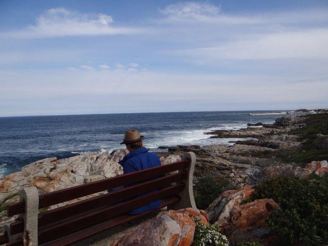 Whale-Watching in Hermanus. Wie man sieht, sieht man nichts.