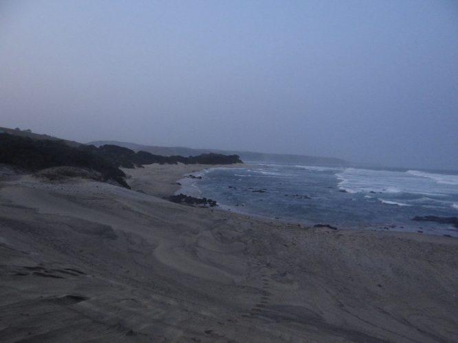 """Der Name """"Wild Coast"""" kommt nicht von ungefähr. Das Wasser ist hier auch schon deutlich wärmer als in Kapstadt, wenn es aufgrund des wechselhaften Wetters für uns auch nur für ein kurzes Bad gereicht hat."""