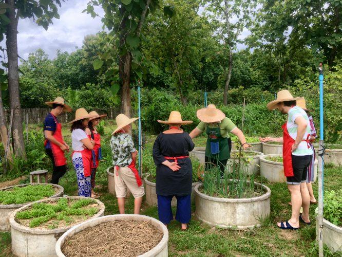 We took a Thai cooking class on an organic farm.