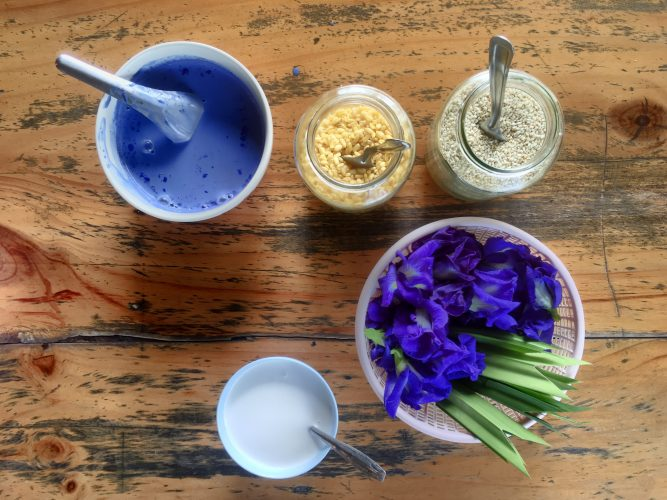 The ingredients for mango sticky rice, THE Thai dessert. The blue color is completely natural from the flowers.