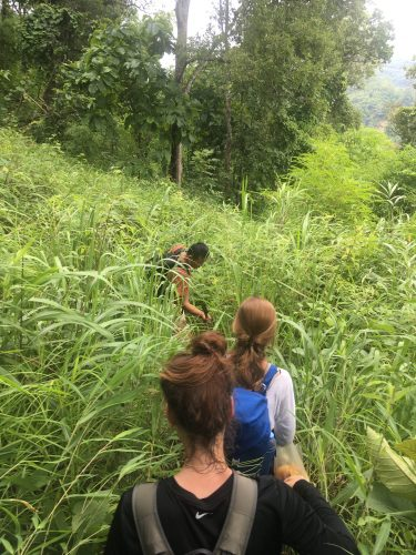 ...the cliché jungle experience came true when our guide had to take out his machete to clear the path for us.