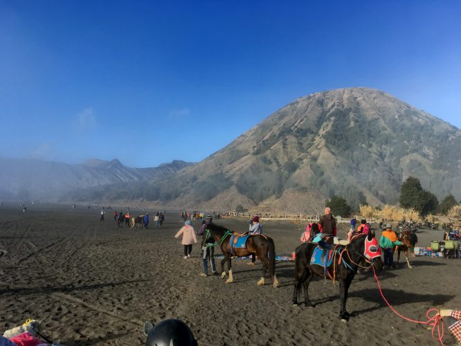 After viewing Bromo at sunrise from a distance, we also got the chance to climb the crater itself. People who didn't even want to walk the 20-30 minutes to the foot of the crater could hire a horse at the car park.