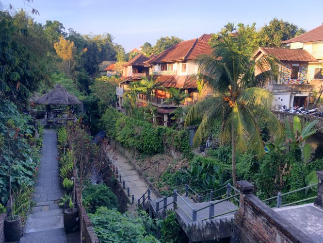 In Ubud, the city where we stayed.