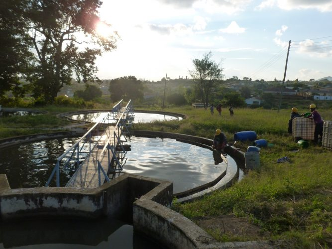 In the evening, the emptiers clean their equipment in the  secondary clarifier of the wastewater treatment plant as noboody manages  to (or cares about) setting up a proper cleaning place.