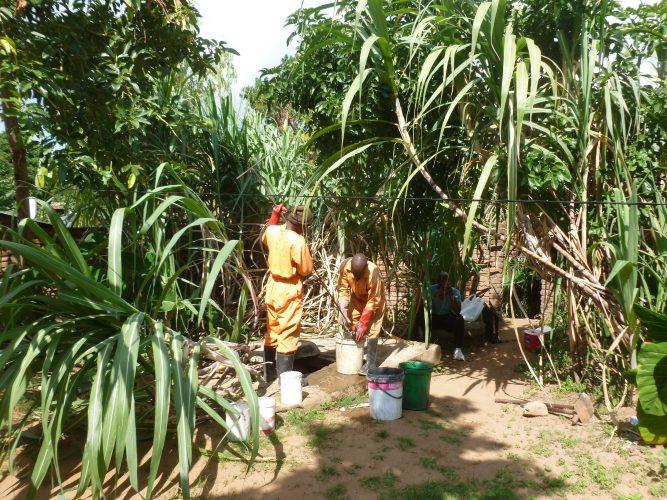 Idyllic emptying #3: Under sugar cane.