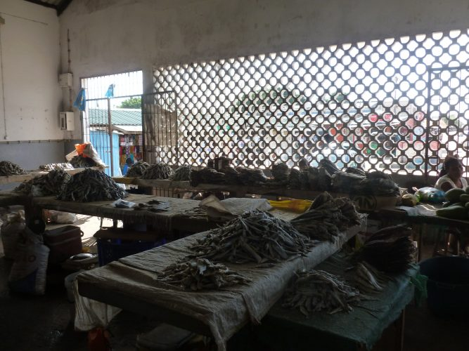 Vilanculos is a small fishing village. This is at the local market where you can buy dried fish.